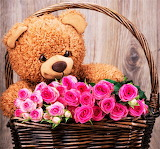 #Roses and Teddy Bear