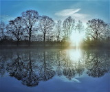 Pond and trees sunrise Groningen Netherlands.