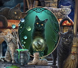 cats,books and mystery