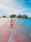 Pink beach...............................................x