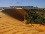 Brazilië Tocantins Woestijn-en-Groen
