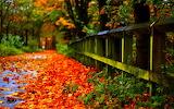 it was autumn