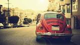 Street Red Bug