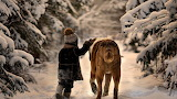 Winter Walk of Child and Faithful Dog