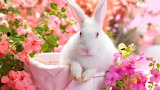#Happy Easter to All My Jigsaw Planet Friends