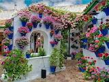 Maison fleurie - Cordoba