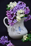 pitcher of flowers