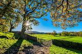 Yorkshire Dales National Park, England