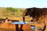 Ithumba, Kenya ~ Best Place to Experience Elephants