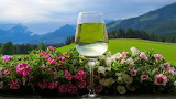 Wine, glass, landscape, flowers, mountains, nature, slopes, tops