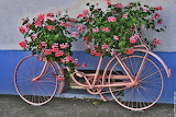 Bicycle-flower-planter-4