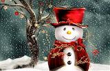 #Christmas Snowman