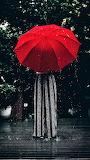 #Red Umbrella