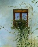 Italian-flower-window-cecilia-brendel