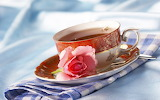 ~Morning Tea~