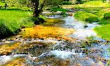 Stream, Virginia