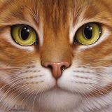 Meow-za