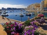 St-julians-malta-flowers-skyscrapers-water-sea-ocean-city