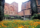Toulouse Musee