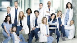 Grey's Anatomy 14