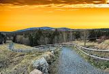 Pathway - Photo from Piqsels id-fsgvk