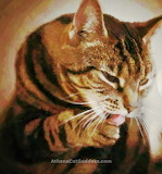 Caturdayart - Impressionism with a tiny touch of Pointillism
