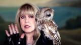 Stevie Nicks Moonlight--A Vampire's Dream