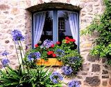 #A Lovely Window