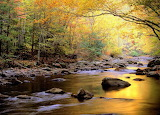 Little River in Autumn Great Smoky Mountains National Park Tenne