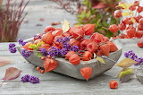 Wooden bowl with physalis