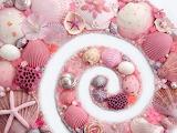 PinkSeashells