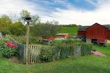 Amish farm, Ohio, USA