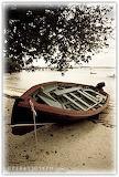 Island-row-boat-7508-tn