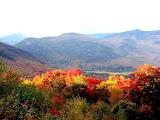 Tardor al Montnegre - Montnegre Autumn
