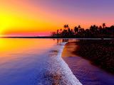 Beach tropics sea sand palm trees sunset 84729 1600x1200 (1)