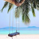 Swinging paradise