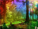abstract rainbow forest