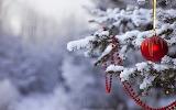 Christmas-tree-ball on snowy tree