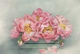 Flowers, bouquet, petals, art, stamens, pink, box, painting, peo