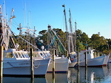 Part of the Shrimping Fleet Harkers Island North Carolina USA