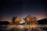 Fall Colors & the Night Sky