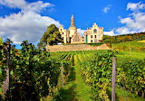 Arenfels Castle and Grape Vines Germany