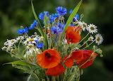 ^ Bouquets Poppies Cornflowers Chamomiles