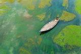 Boat river Bangladesh