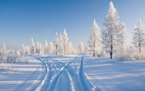 Winter-images-2560x1600-3