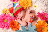 Child, baby, child, newborn, flowers, hat, color, colour