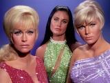 Star Trek: Mudd's Women