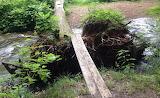 Mile 1184 Trail