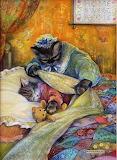 Bedtime Kitty