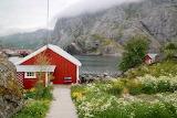 "Lofoten Norway - Photo 5215104 by ""Majaranda"" from Pixabay"